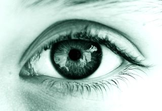 Img-images-eye-alexinger-3757