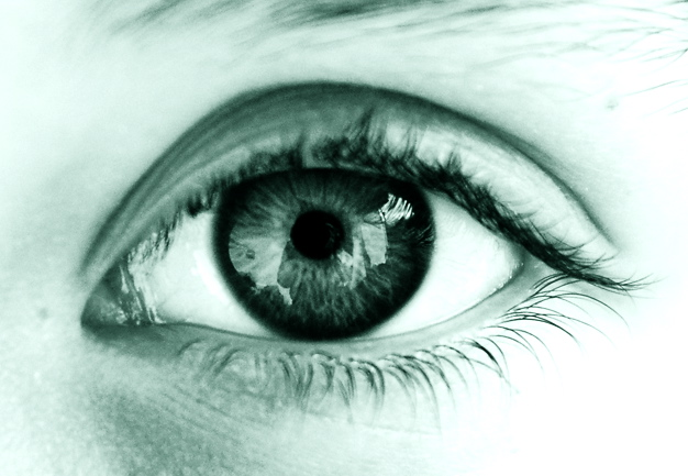 Img-images-eye-alexinger-3757