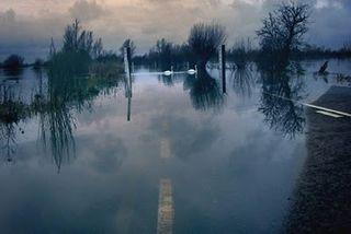 Content-flood_420