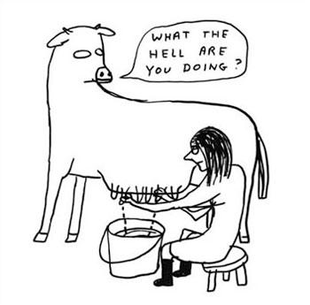 David_shrigley_cow