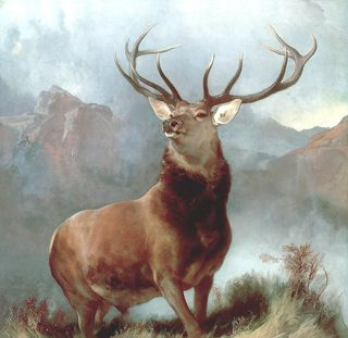 Monarch-of-the-glen-sir-edwin-landseer