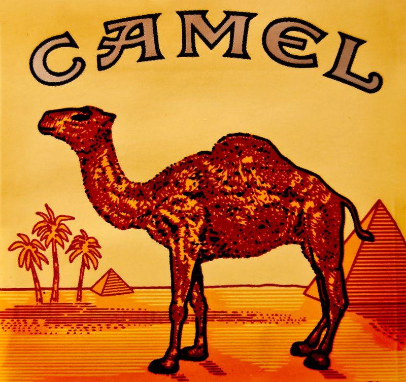 Camel-cigarette
