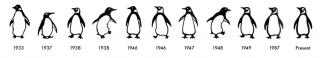 Penguin-Logos-1024x187